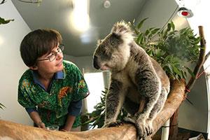 Fauna Oz education Dr Anne Fowler